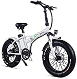 RDJM Bici electrica Bicicletas rápidas y Eléctrica en Adultos Plegable Bicicleta eléctrica 500w 48v 15Ah 20' 4.0 Fat Tire Pantalla LCD e-Bicicleta con 5 Niveles de Velocidad (Color : White)