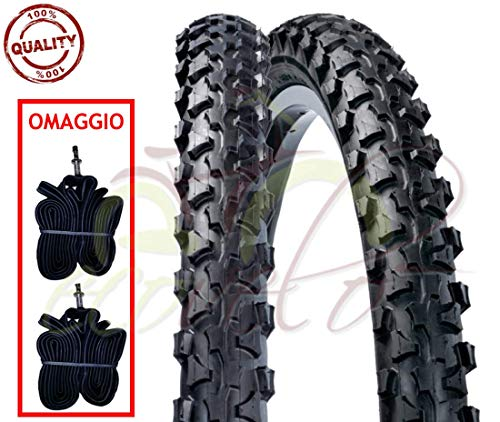 DSI EBA20MAS 2 CAMERE + 2 COPERTONI Neri per Mountain Bike 20 X 1.90 (50-406) MTB Mountain Bike Bici Bicicletta