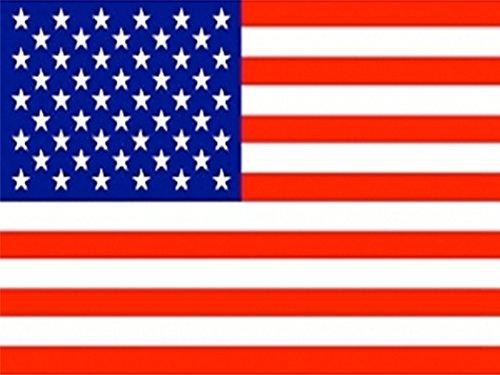 Piersando vlag 150 cm x 90 cm landvlag fanartikel land vlag met metalen ogen USA