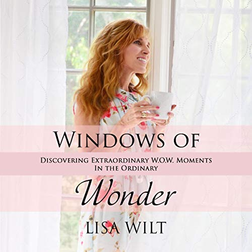 Windows of Wonder: Discovering Extraordinary W.O.W. Moments in the Ordinary audiobook cover art