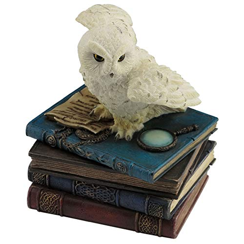 VERONESE Figura de Baratija Decorativa, Adecuado para El Hogar, Casa, Oficina, Habitación y Salón Decoración, Owl Figured Box