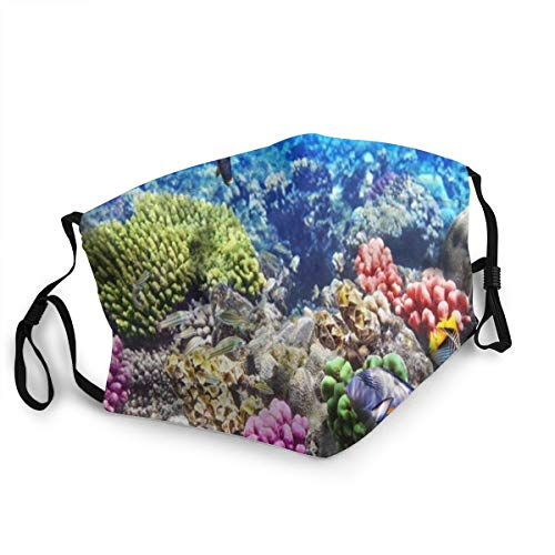 Bandana riutilizzabile a mezza faccia,Lotto Hurghada Reef Coral Fish Red Egypt Animali Fauna selvatica Natura Oceano Vita Acquario Hawaii Sott'acqua,Coprivaso sportivo regolabile