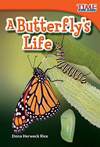 Teacher Created Materials - TIME For Kids Informational Text: A Butterfly's Life - Grade 1 - Guided Reading Level E