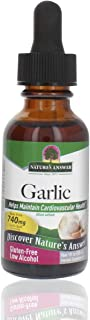 Nature's Answer Garlic Extract | Promotes Overall Health & Well-Being | Made with Low Organic Alcohol | Gluten-Free, Non-G...