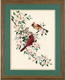 Best crewel embroidery kits birds Reviews