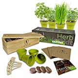 Indoor Herb Garden Starter Kit | 4 Non-GMO Herbs | Beginner Friendly | DIY Kitchen Herbs Growing Kit | Wooden Box | Perfect Gift Idea | Basil, Parsley, Cilantro, Chives