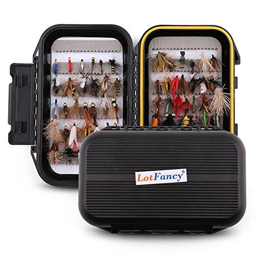 LotFancy 60 PCS Dry/Wet Flies