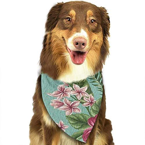 YAGEAD Pañuelo para Perros Cachorro y pañuelos para Mascotas, Flor de Hibisco Hojas de Palmeras Tropicales en Turquesa Bufanda para Mascotas