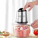 ZY Selettore Rotante Elettrico Mini tritacarne, 350W processore di Verdure, 2 velocità Glass Bowl, Cucina Meat Grinder Mincer for Frutta Formaggio Nuts LOLDF1