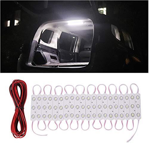 Thlevel LED Mdulo 12V Blanco Fro, Kit de 20 Tiras de 3 LED, Iluminacin LED Letras Firmar Cartelera Luz, Kits de Luz Interior para Coches, Furgonetas, Barcos, Autocaravanas, Caravanas