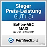 Betten-ABC Lattenrost Max 1 NV zur Selbstmontage/Lattenrahmen in 90 x 200 cm mit 28 Leisten und Mittelzonenverstellung - geeignet für alle Matratzen - 2