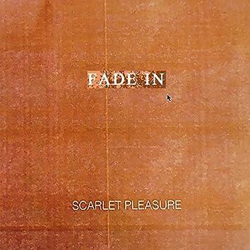 Fade In (Single Version)