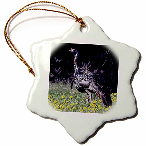 3drose Wild Turkey Gobbler Snowflake Porcelain Ornament, 3-Inch