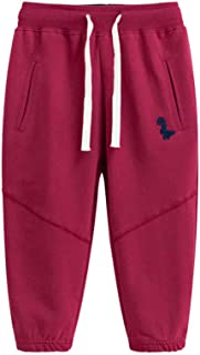 Fruitsunchen Little Boys' Cotton Dinosaur Sweatpants Sport Active Jogger Pants for 2-6T