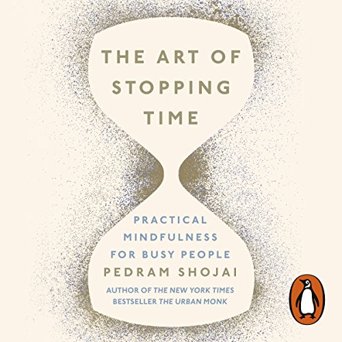 The Art of Stopping Time cover art