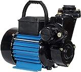 Lakshmi 1 HP Self Priming Monoblock Water Pump (Blue/Green/Yellow)