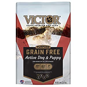 Victor Super Premium Pet Food Dog Food Grain-Free Active Dog & Puppy for All Life Stages – Beef – 5 (894308002169)