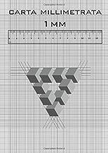 Carta Millimetrata, 1 mm quadrato: libro da disegno di ingegnere (Italian Edition)