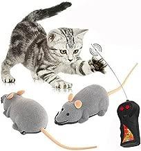 Amazon.es: juguetes para gatos