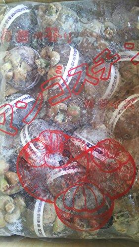 タイ産 マンゴスチン 20個 冷凍 業務用