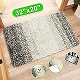 Best Indoor Mats - Indoor Doormat Front Door Mat, Super Absorbent Entrance Review