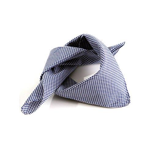 ALMBOCK Trachtenschal Herren Blau - Trachtentuch Nickituch blau kariert - Dreieckstuch für Herren
