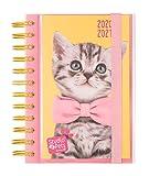 Diario Scuola Giornaliero 2020/2021 Sudio Pets Cat, 11 mesi, 11,4x16 cm