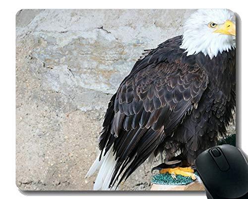 Yanteng Alfombrillas de ratón Personalizadas, Ojos Oficina de águilas calvas Alfombrilla de ratón