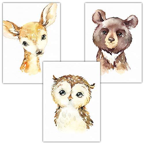 Frechdax® Bilder Babyzimmer 3er Set DIN A4 ohne Bilderrahmen | Waldtiere Porträt Tierposter (3er Set Bär, Eule, REH)