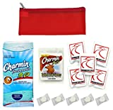 Public Toilet and Restroom Survival Kit, Toiletry Bag for Germ Protection, Flushable Wipes and...
