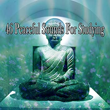 46 Peaceful Sounds For Studying