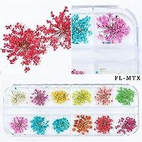 本物の押し花 ドライフラワー 大人気ネイル 押し花ドライフラワーレースネイルアート 5種から選び  (4)