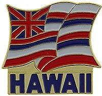 "USA STATES, HAWAII - Original Artwork, Expertly Designed PIN - 1"""
