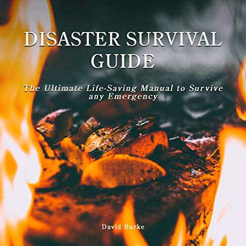 Disaster Survival Guide cover art