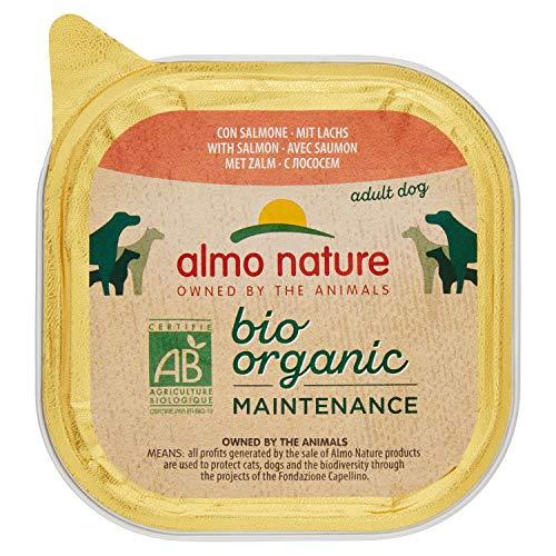 almo nature Bio Organic Maintenance con Salmone -Cibo Umido per Cani Adulti - Pacco da 9 x 300 g