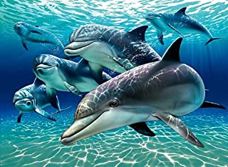 Pod of Dolphins Painting ~ Edible Image Cake Topper