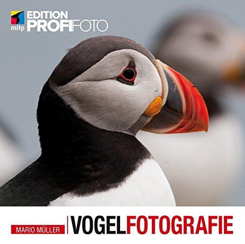 Vogelfotografie (mitp Edition ProfiFoto)