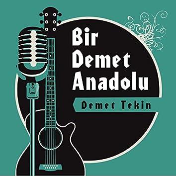 Bir Demet Anadolu