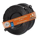 DREHFLEX - 2 filtros de carbón AK48 - Filtro de carbón activo - Apto para Bauknecht/Whirlpool/Ikea - apto para 482000095104 480122101262 // AMC037 AMC 037