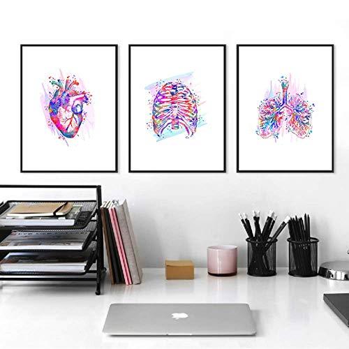 NoNo Bilder auf Leinwand Anatomie Menschliches Herz Gehirn Leinwand Poster Druck Neurologie Medizin Kunst Watet Farbmalerei Student Geschenk Ärzte Büro Wanddekoration 40cmx60cmx3 STK.Kein Rahmen