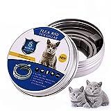 XINLINTRA Collare Antipulci Cane, Antiparassitario per Cani per Tutti i Tipi di Cani Impermeabile Regolabile, di Protezione per Contro Parassiti e Insetti Protezione Stagione Completa (S-38cm)