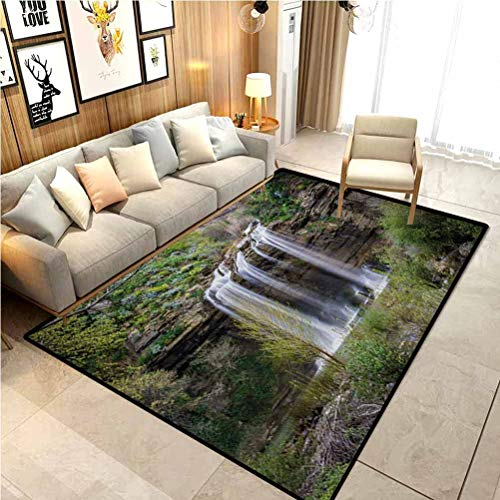 Nature Bath Rugs Rugs and Carpets Indoor Outdoor Rug Photo of Waterfall Forest Jungle Corleone Sicily Rocks Trees Grass Landscape Marine Carpet for Boats Brown Green White 2 x 3 Ft