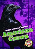 American Crows (North American Animals)