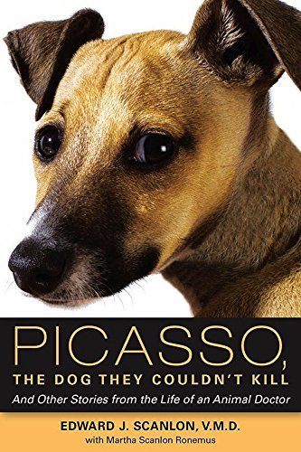 Picasso, The Dog They Couldn't Kill: And Other Stories from the Life of an Animal Doctor (English Edition)