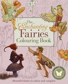 The Enchanting Fairies Colouring Book