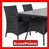 CleanPrince Geflechtmöbel-Reiniger, 500 ml - 3