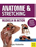 Anatomie & Stretching (Anatomie & Sport, Band 2): Muskeln in Aktion - Paidotribo