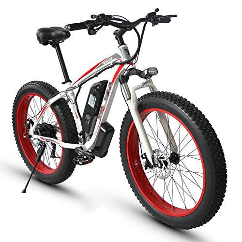 Bicicleta Eléctrica Winora marca TANCEQI