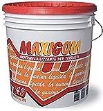 Laiv PPMAXITRASP 03 Maxigom, Guaina Liquida Impermeabilizzante, Trasparente, 4Lt