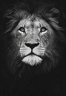 BEILUOZSH Tableau Décoratif Imprimé sur Toilenordique Toile Art Peinture Noir Blanc Lion Impression Animal Mur Art Affiche...